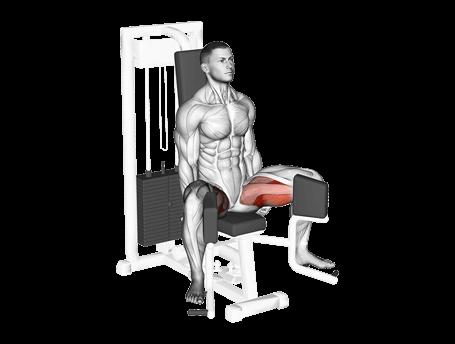 Exercises for Inner Legs