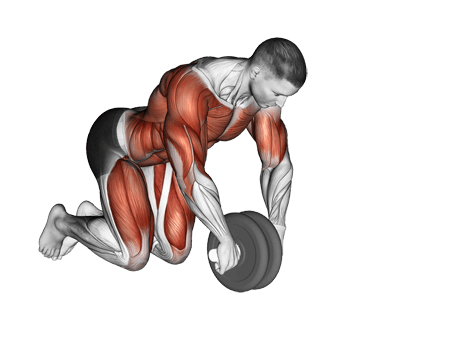 Ab Rollout Exercises