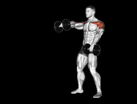 Shoulder Raise Exercises