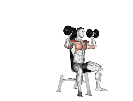 Exercises for Upper Body